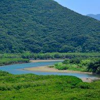 住用町の広大な『マングローブ原生林』は、カヌーで探検するのも楽しい/奄美大島