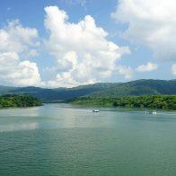 約160ヘクタールものマングローブ林が生育する仲間川流域/西表島