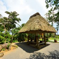 穀類の貯蔵庫『高倉』。昔ながらの『高倉』は大切に保存されている/奄美大島