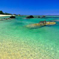 サンゴ礁に囲まれた白い砂浜が1.5キロにわたって続く『畦プリンスビーチ海浜公園』/徳之島