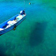 漁港でも海の底を見ることができるこの透明度/奄美大島