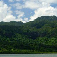 森の奥に望むピナイサーラの滝は55mもの落差を誇る/西表島