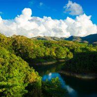 豊かなやんばるの森に囲まれた辺野喜(べのき)ダム/国頭村