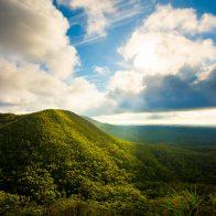 自然の雄大さを感じる大宜味村の玉辻山は標高289m/大宜味村