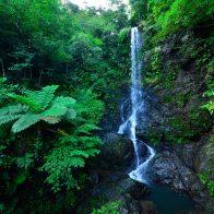 かつてノロの親神が体を清めていたという『嘉入の滝』/加計呂麻島