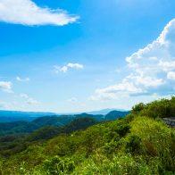 大宜味村の山中にある石山展望台からは絶景が楽しめる/大宜味村
